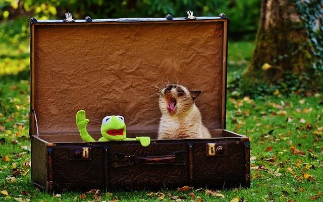 Megjegyzések utazásfüggőknek