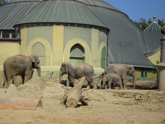 Müncheni Állatkert és Elefántház