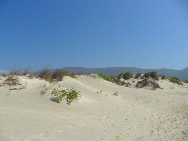 Elafonissi homokdűnék