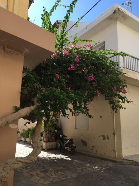 Ierapetra virágos házak