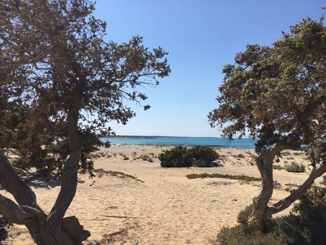 Kréta Chrissi strandok