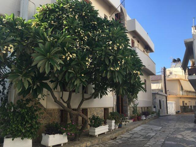 Kréta Ierapetra mediterrán utca