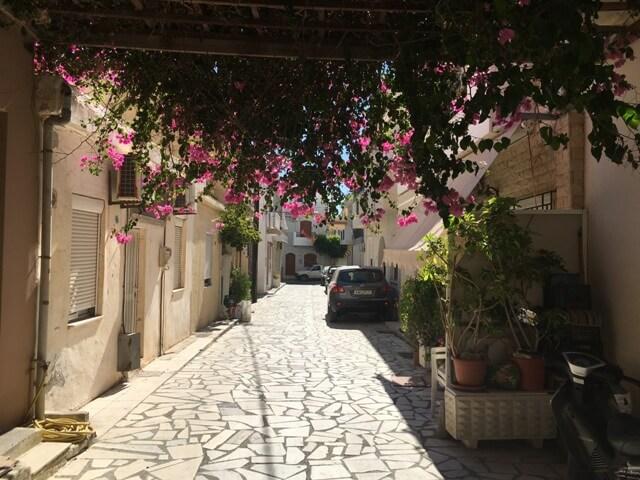 Kréta Ierapetra virágok