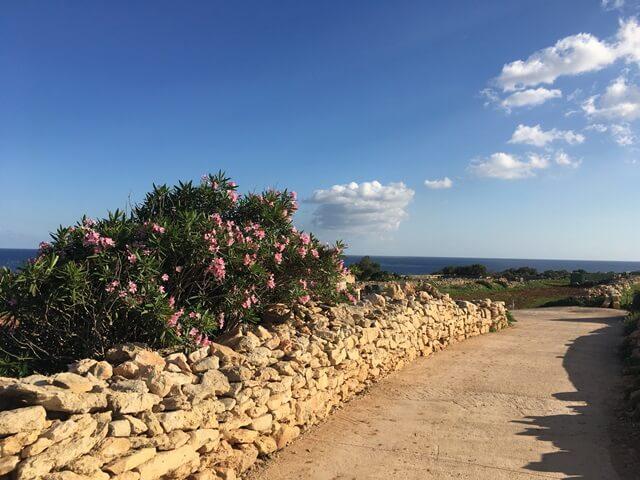 Máltai nyelvtanfolyam szabadidő