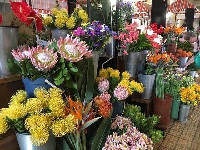 Madeira virágok