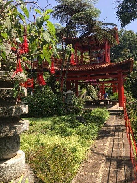 Trópusi kert Madeira