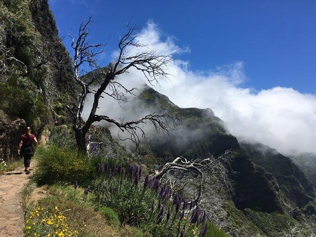 Túrázás Madeira