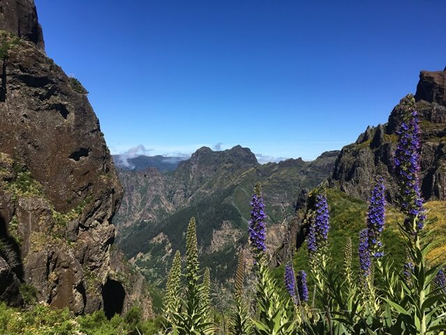 Útleírás Madeira